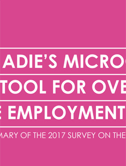 Adie's Microcredit, a Tool for Overcoming the Employment Challenge - Summary of the 2017 Survey on the Impact of Adie's Work