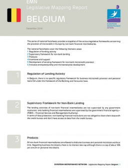 EMN Legislative Mapping Report - Belgium