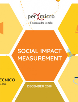 PerMicro's Social Impact measurement: personal and business loans cover