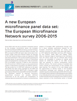 A new European microfinance panel data set cover pic